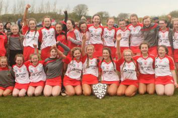 Shamrocks' camogs are crowned Feile A champions